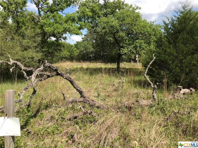 00 Bluebonnet Bend, OTHER, TX 78962 (#376654) :: Realty Executives - Town & Country