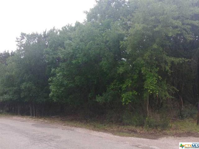 0000 County Road 3384, Kempner, TX 76539 (MLS #376671) :: The Graham Team