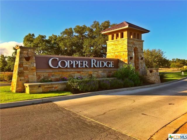 540 Copper Crest, New Braunfels, TX 78132 (MLS #377778) :: Erin Caraway Group