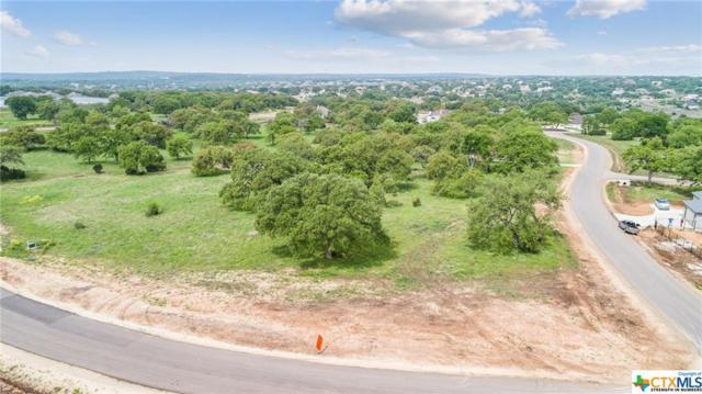 Lot 1690 Curvatura, New Braunfels, TX 78132 (MLS #377786) :: Vista Real Estate
