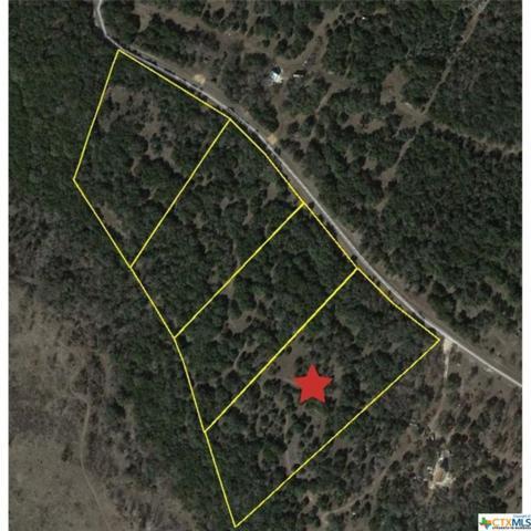 TBD Owl Creek Road, Belton, TX 76513 (MLS #377796) :: Erin Caraway Group