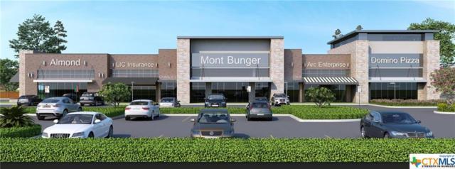 6 W Loop 121, Belton, TX 76513 (MLS #377801) :: Marilyn Joyce | All City Real Estate Ltd.