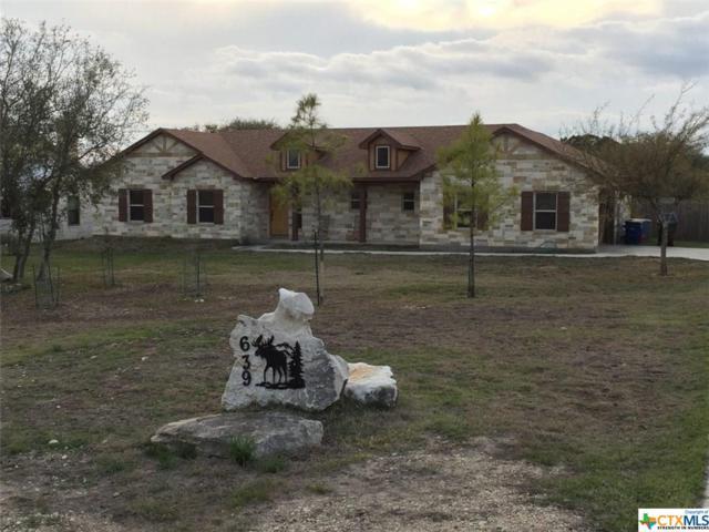 639 Pinnacle Parkway, New Braunfels, TX 78132 (MLS #377885) :: Erin Caraway Group