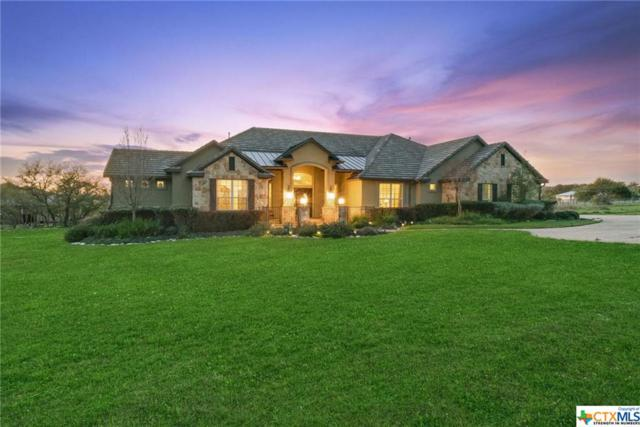 1307 Vintage Way, New Braunfels, TX 78132 (#378090) :: Realty Executives - Town & Country