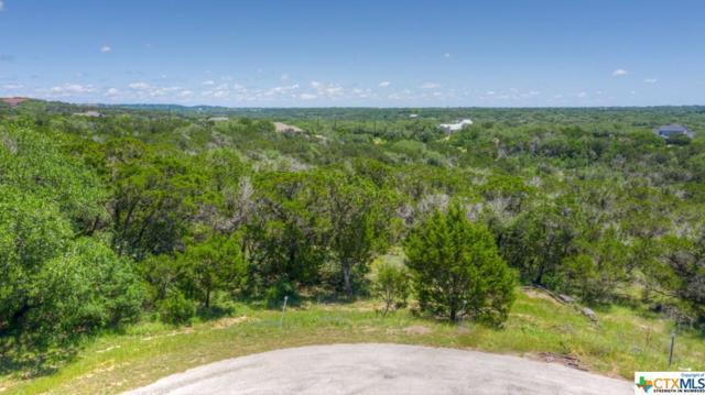 177 Lupin, New Braunfels, TX 78132 (MLS #378210) :: Erin Caraway Group