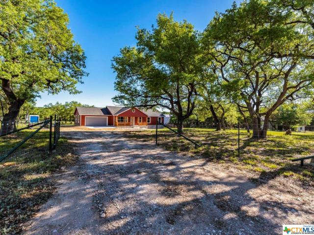 160 Link Lane, Wimberley, TX 78676 (MLS #378226) :: Carter Fine Homes - Keller Williams Heritage