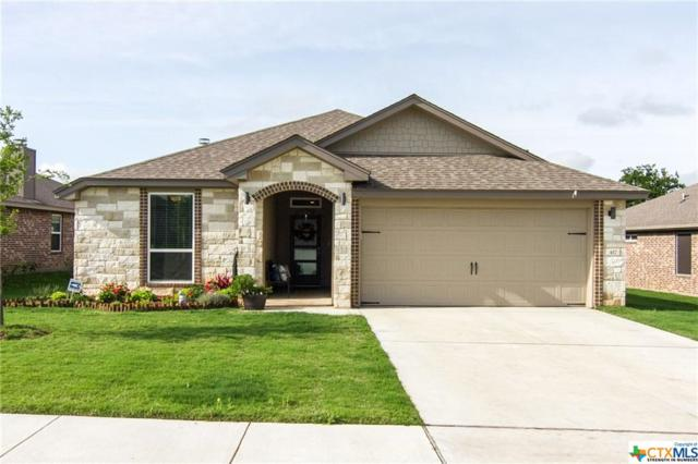 417 Bella Rose Drive, Belton, TX 76513 (MLS #378281) :: The Graham Team