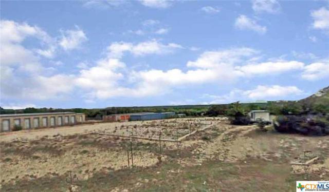 135 County Road 4953, Kempner, TX 76539 (MLS #378387) :: The Real Estate Home Team