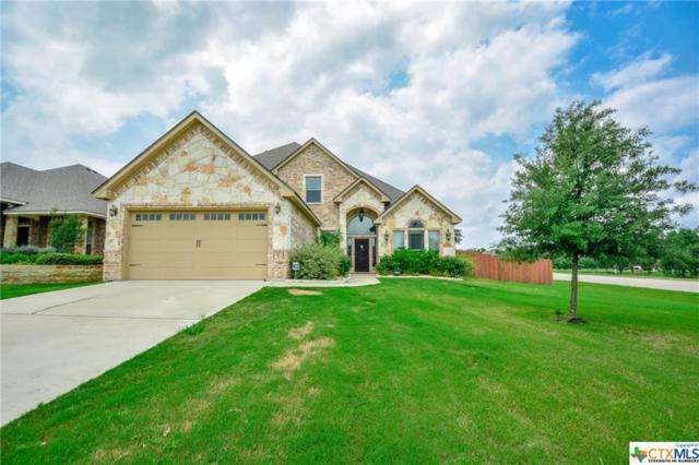 3321 Ten Bits Drive, Belton, TX 76513 (MLS #378408) :: Brautigan Realty
