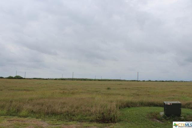 14 Redfish Way, Port Lavaca, TX 77979 (MLS #378457) :: RE/MAX Land & Homes