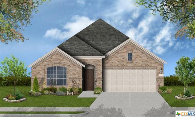 833 Silver Fox, Cibolo, TX 78108 (MLS #378521) :: Erin Caraway Group