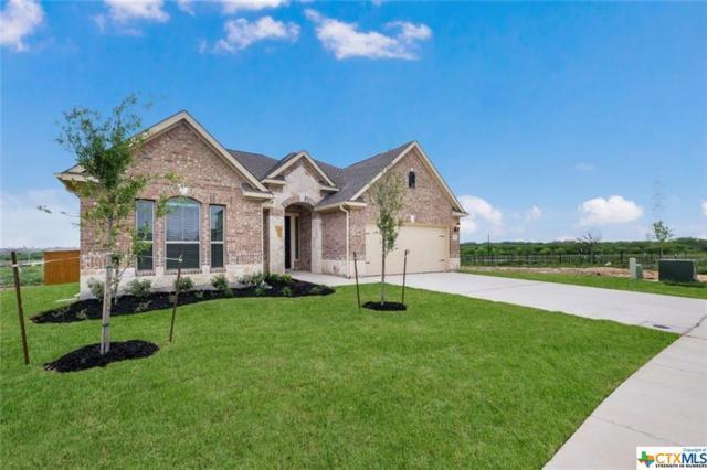 718 Silver Fox, Cibolo, TX 78108 (MLS #378530) :: The Graham Team