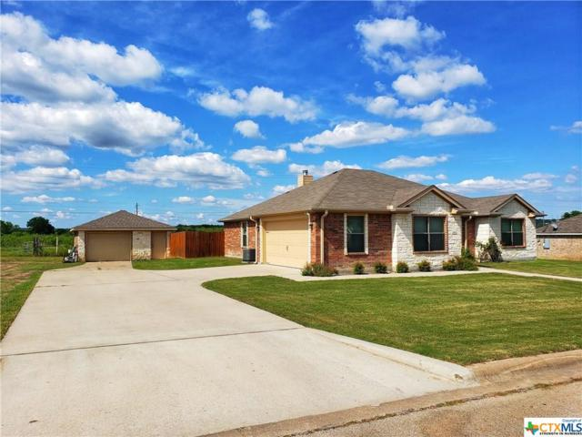 319 Valley View Drive, Gatesville, TX 76528 (MLS #378626) :: The Real Estate Home Team