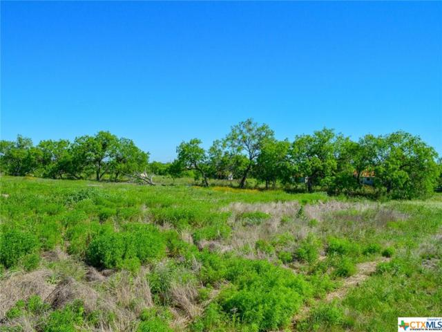 2082 Wosnig Rd, Marion, TX 78124 (#378670) :: Realty Executives - Town & Country