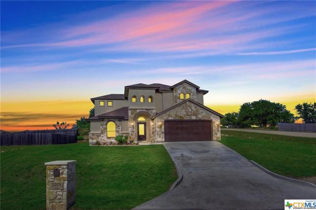 2205 Pirtle Drive, Salado, TX 76571 (MLS #378722) :: The Real Estate Home Team