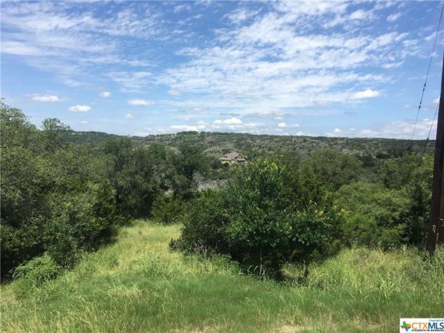 185 Clear Ridge, New Braunfels, TX 78132 (MLS #378732) :: Vista Real Estate