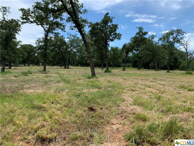 1140 County Road 126, Edna, TX 77957 (MLS #378744) :: The Zaplac Group