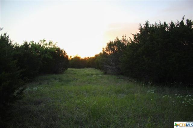 TBD - 1 County Rd 146, Gatesville, TX 76528 (MLS #378797) :: The Real Estate Home Team