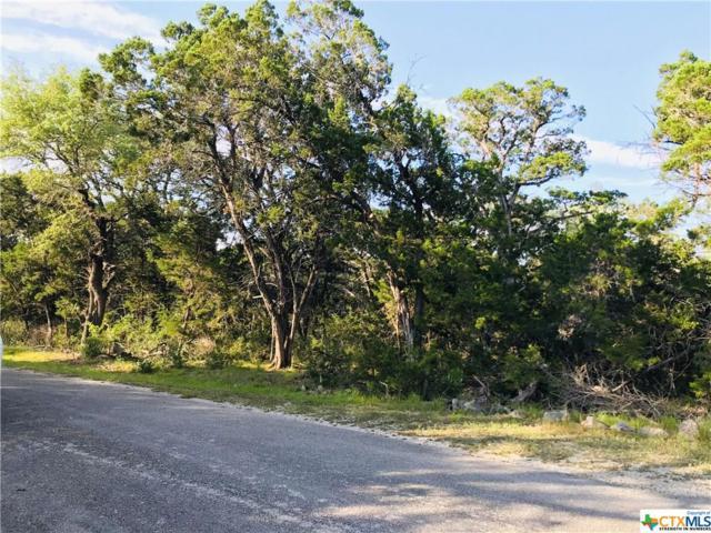 187 Oak Summit, Canyon Lake, TX 78133 (#378798) :: Realty Executives - Town & Country