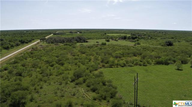 9528 Us Highway 77 S, Victoria, TX 77905 (MLS #378799) :: RE/MAX Land & Homes
