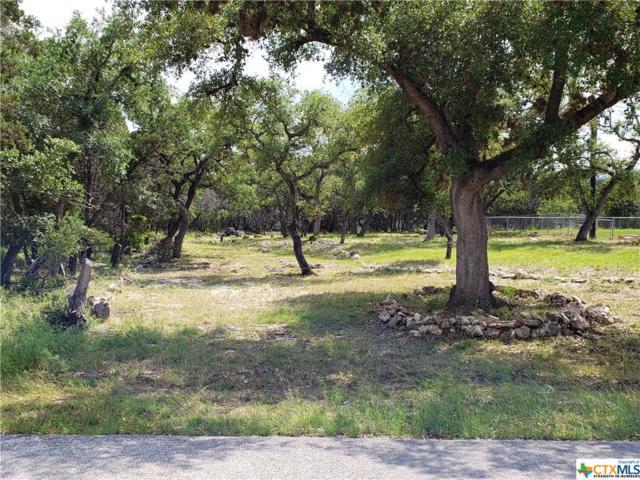 2214 Lakeview Drive, Canyon Lake, TX 78133 (MLS #378825) :: Magnolia Realty