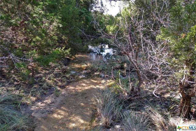 0 Stallion Estates Drive, Spring Branch, TX 78070 (MLS #378826) :: Erin Caraway Group