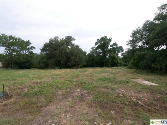 13018 Pigeon Forge Drive, Temple, TX 76513 (MLS #378839) :: Vista Real Estate