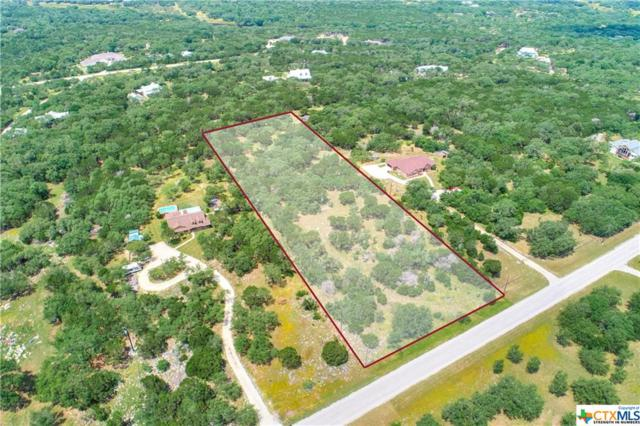 409 Avian Drive, San Marcos, TX 78666 (#378959) :: Realty Executives - Town & Country