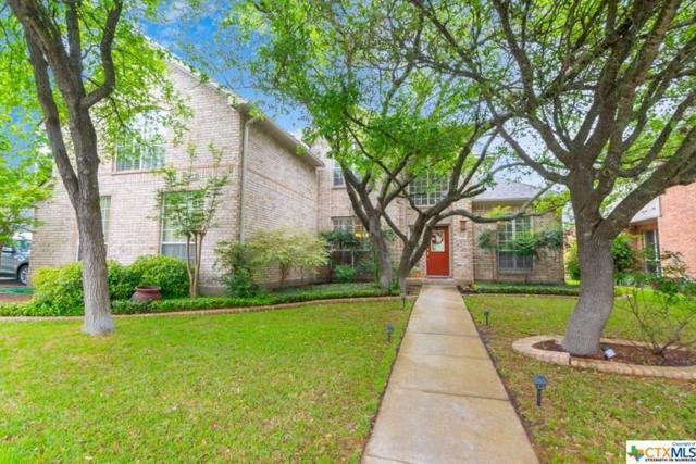 702 Treaty Oak, San Antonio, TX 78258 (MLS #378998) :: Erin Caraway Group