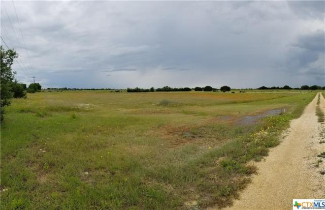 1450 County Road 221, Florence, TX 76527 (MLS #379027) :: The Graham Team