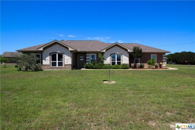120 Lakewood Drive, Gatesville, TX 76528 (MLS #379056) :: Brautigan Realty