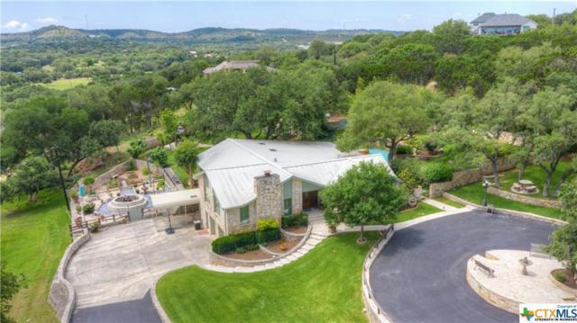 113 Campbell Drive, Canyon Lake, TX 78133 (MLS #379152) :: Vista Real Estate