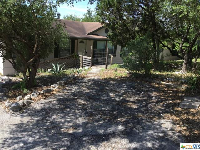 450 Jaylee, Canyon Lake, TX 78133 (MLS #379178) :: Berkshire Hathaway HomeServices Don Johnson, REALTORS®