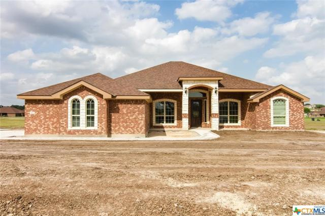921 Cr 4772, Kempner, TX 76539 (MLS #379187) :: RE/MAX Land & Homes