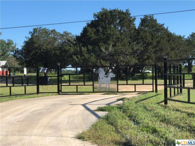 4115 County Road 4390, Kempner, TX 76539 (#379205) :: Realty Executives - Town & Country