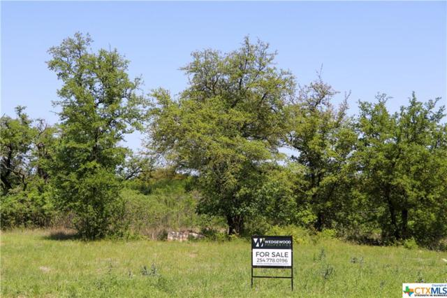 2346 Limestone Court, Belton, TX 76513 (MLS #379215) :: Erin Caraway Group
