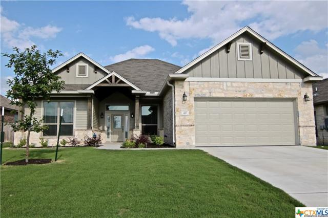 417 Hawks Shadow Drive, Temple, TX 76502 (MLS #379312) :: Berkshire Hathaway HomeServices Don Johnson, REALTORS®