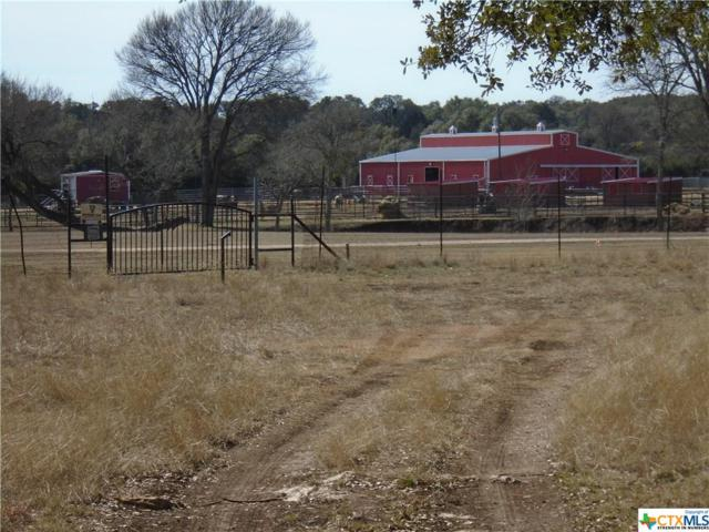 341 John Price, Blanco, TX 78606 (#379314) :: Realty Executives - Town & Country