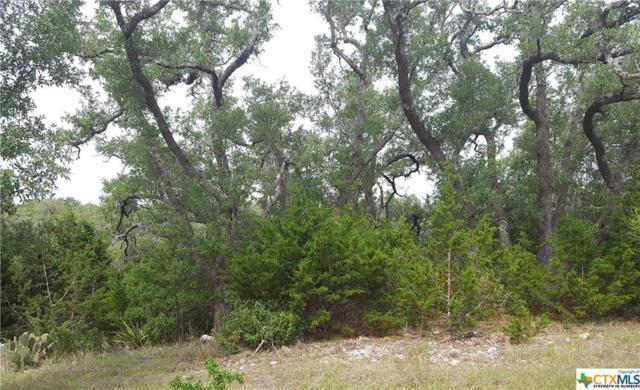 2220 Cascada Parkway, Spring Branch, TX 78070 (MLS #379316) :: Berkshire Hathaway HomeServices Don Johnson, REALTORS®