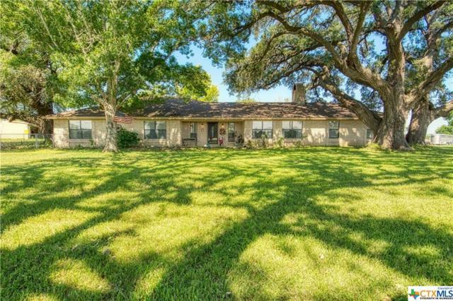 8874 Us Highway 183, Cuero, TX 77954 (MLS #379328) :: Berkshire Hathaway HomeServices Don Johnson, REALTORS®