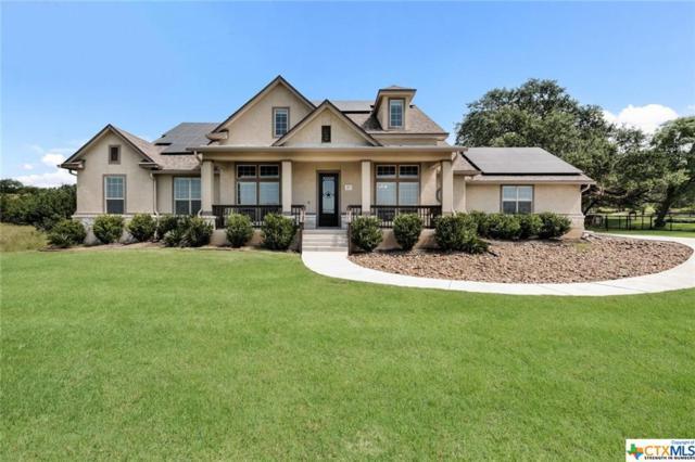 260 Mystic Shores Boulevard, Spring Branch, TX 78070 (MLS #379333) :: Berkshire Hathaway HomeServices Don Johnson, REALTORS®