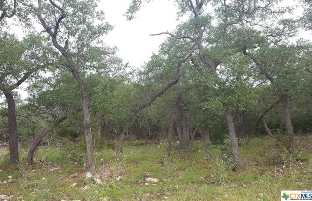 2224 Cascada Parkway, Spring Branch, TX 78070 (MLS #379352) :: Berkshire Hathaway HomeServices Don Johnson, REALTORS®