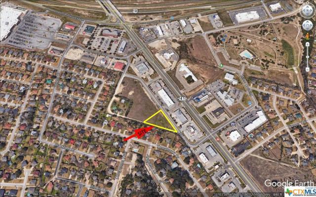 240 Millers Crossing, Harker Heights, TX 76548 (MLS #379372) :: The Real Estate Home Team