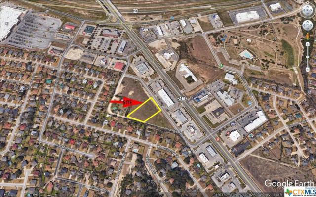 230 Millers Crossing, Harker Heights, TX 76548 (MLS #379373) :: The Real Estate Home Team