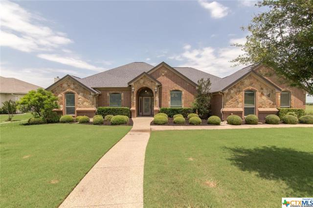 2889 Hester Way, Salado, TX 76571 (MLS #379387) :: Brautigan Realty