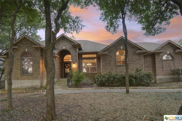 468 Shady Hollow, New Braunfels, TX 78132 (MLS #379403) :: RE/MAX Land & Homes