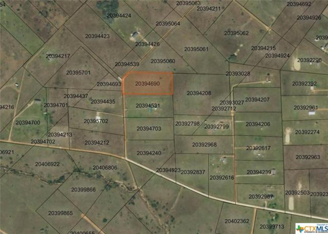 0 Tract 59 Shady Hollow, Victoria, TX 77905 (MLS #379411) :: Vista Real Estate