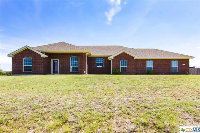 459 Gaylon Drive, Copperas Cove, TX 76522 (MLS #379419) :: The i35 Group