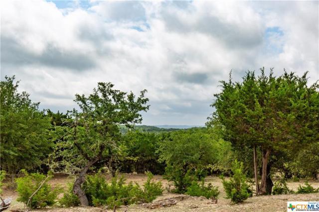 000 Red Sky Road, Wimberley, TX 78676 (MLS #379428) :: Vista Real Estate