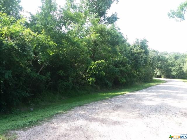 107 Grapevine Drive, Victoria, TX 77905 (MLS #379456) :: Brautigan Realty